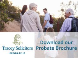 download probate brochure